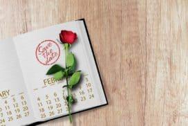 kalendarz weselny w formie notatnika z różą