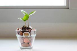 Roślinka rosnąca wdoniczce zapelniona monetami jako symbol tego, żeniewarto oszczędzać pieniędzy nawszystkim